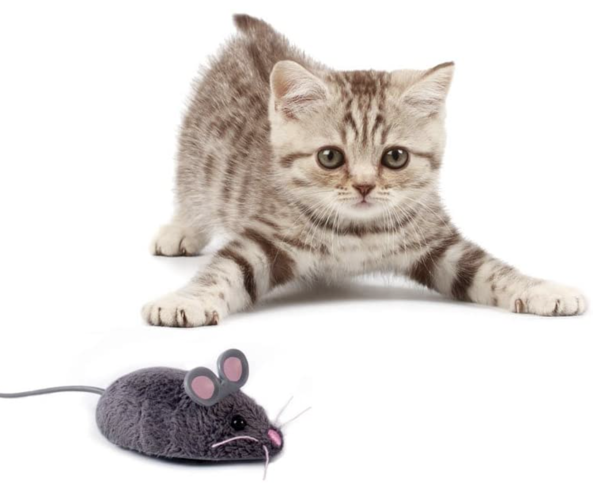 Hexbug Robotic Mouse Cat Toy