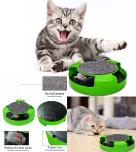 Pasking Catch the Mouse Cat Toy