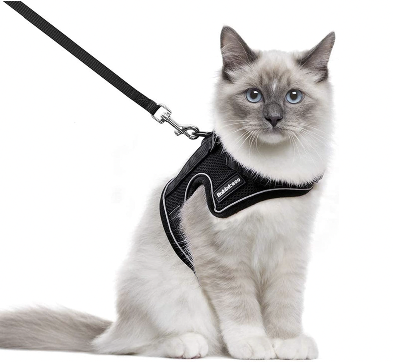 best cat harness for traveling
