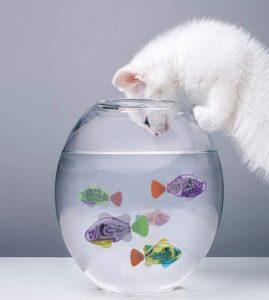 LAVIZO Interactive Robot Fish Toys for Cat