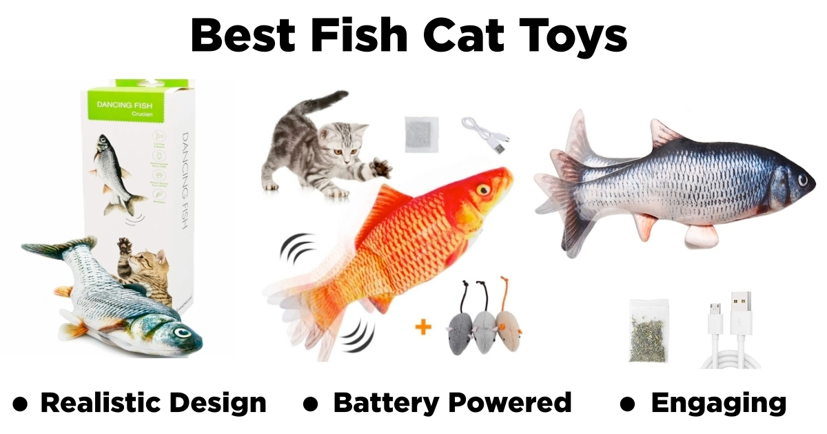 Best Moving Fish Cat Toy