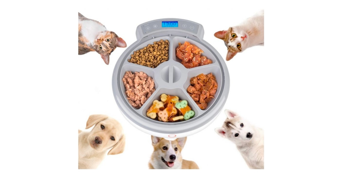 Casfuy Microchip Feeder For Cats