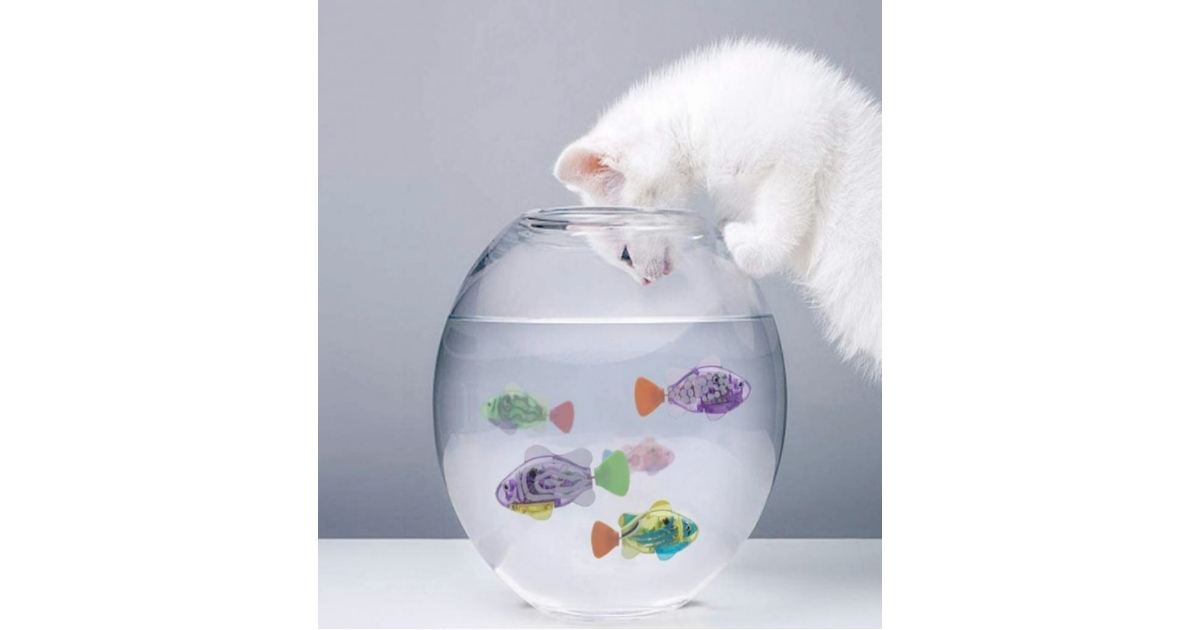 LAVIZO Interactive Best Moving Fish Cat Toy
