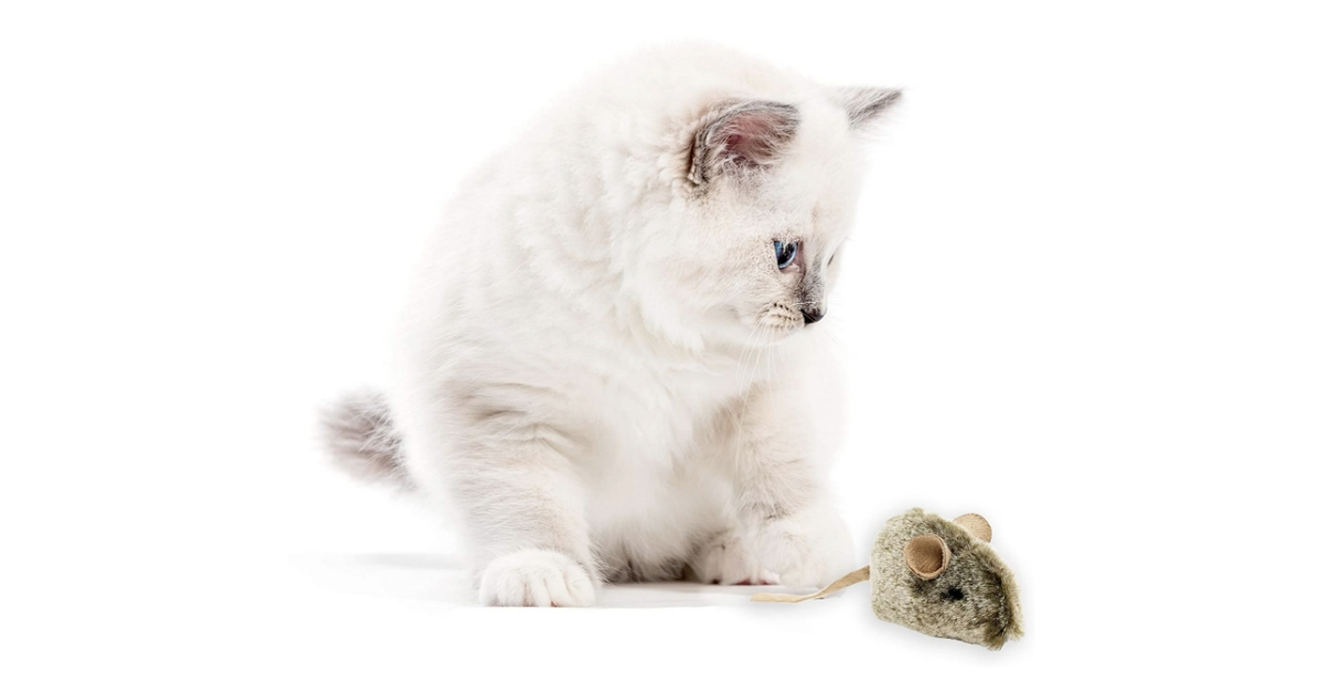 OurPets Play-N-Squeak Twice the Mice Cat Toy