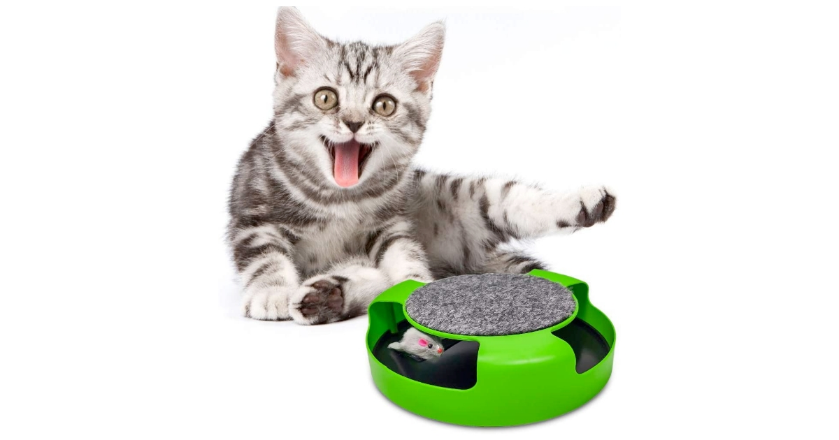 Pasking Catch the Mice Cat Toy