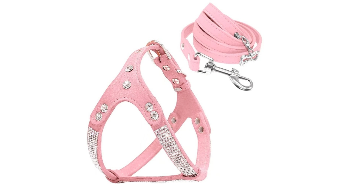 Beirui Soft Cat Harness and Leash