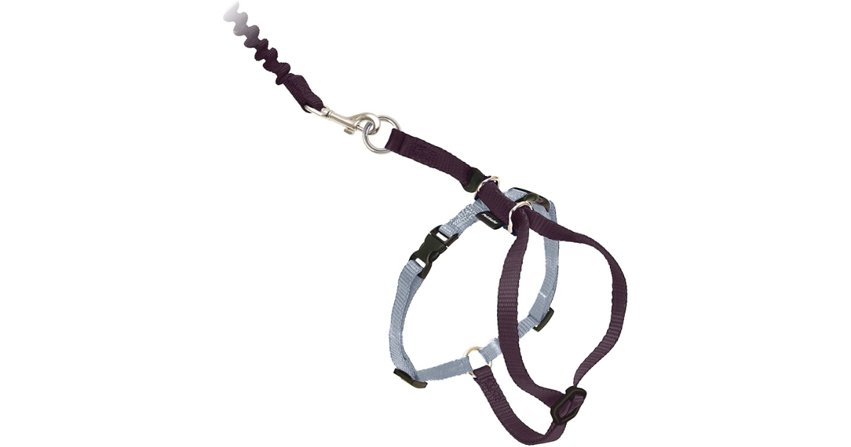 PetSafe Cat Harness and Bungee Leash